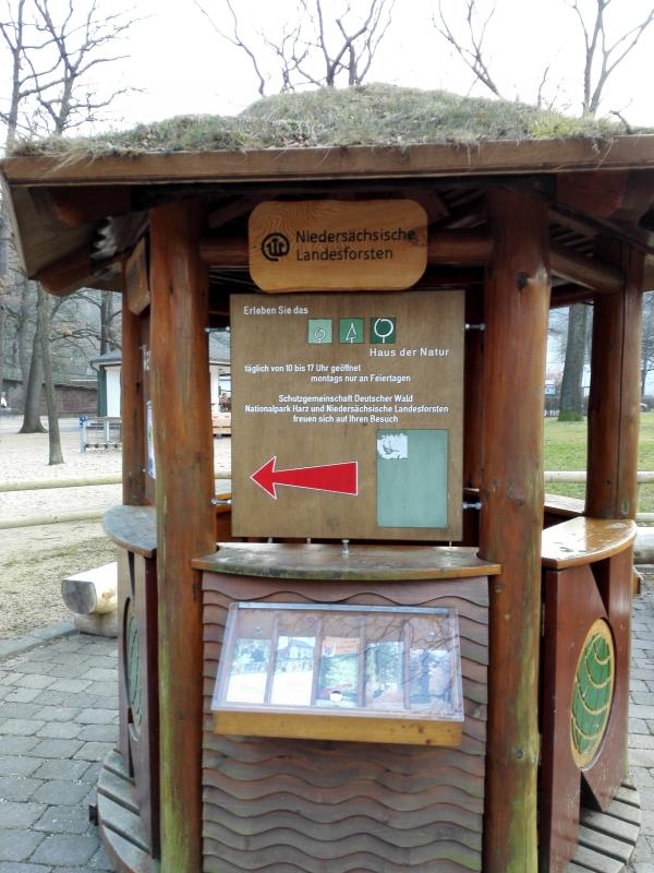 Die Top 10 Attraktionen mit Kindern im Harz